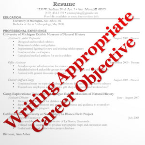 Career objectives essay