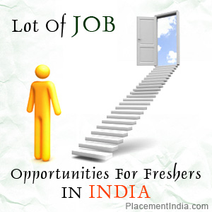 Job Opportunities In India Essay – 166378