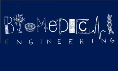Career Prospects Of Biomedical Engineering
